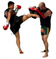 Thai box/Kick box